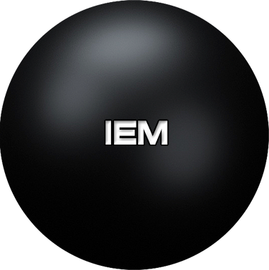 IEM — intelligent enterprise managing systems